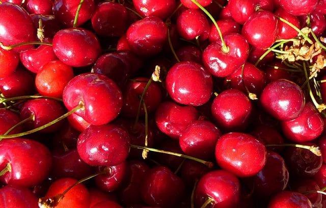 Can Hamsters Eat Cherries