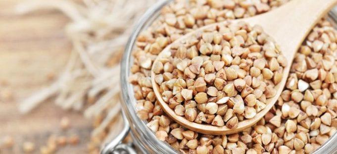 Can Hamsters Eat Buckwheat groats
