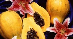 Can Hamsters Eat Papaya