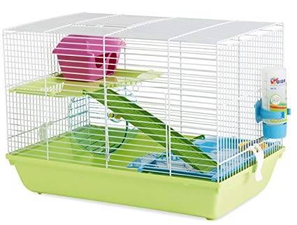 How to Take Care of a Hamster - Hamster Care 101