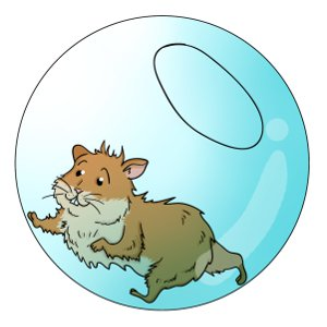 Choosing An Exercise Ball For Your Hamster