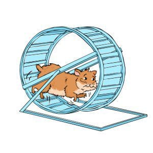 Hamster Wheels: Why your hamster needs a wheel?