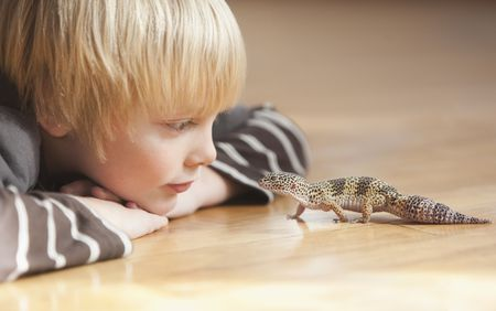 4 Diseases Your Pet Reptile Can Give You 1
