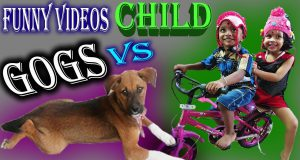 Indian dogs and child funny videos 2019 present by #samratsasmal