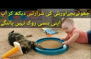 Funny Cute baby and cat funny fails Try Not To Laugh|Hks Group