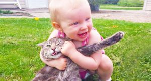 Funny Baby and Cat Playing Together  -  Baby and Cat Videos