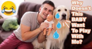 Funny Dog Reacts to a Fake Baby