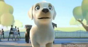 Intelligent dog good message | all information zone | Telugu