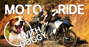 MOTOVLOG with PUPPY! (F850GSA)   Epic fails & Epic aerial shots