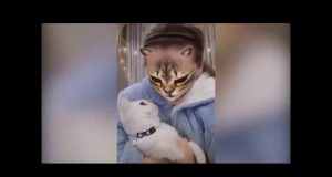 Cat Funny Reaction to the owner- cat mask filter -Reaksi kucing lucu