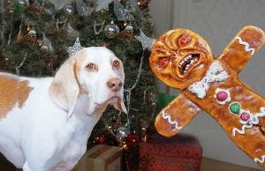 Dogs vs Evil Gingerbread Man Prank: Funny Dogs Maymo & Potpie