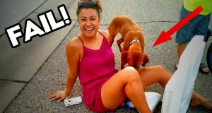 Funny Videos 2019! Try not to laugh! Epic Fail best funny videos of the week Crazy Fun 2019!
