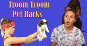 Trying Troom Troom's Pet Hacks With My Great Danoodle! *FAIL*