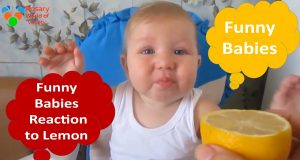 Funny babies Funny is all about the babies Try not to laugh challenge Funny videos,funny video 2020
