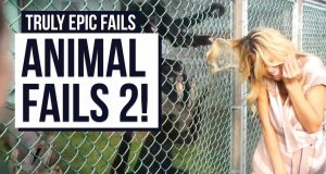 Yet More Animal Fails! | Truly Epic Fails!