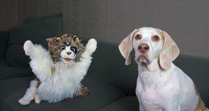 Dog vs Zombie Cat Prank! Funny Dogs Maymo & Potpie Zombie Cat Pranks