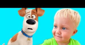 Funny videos with Dog | فيديو للأطفال | Kids videos