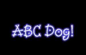 FUNNY Dog Video ABC Dog Funny Pets 2020 cute animals clever dogs