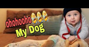 Adorable kids playing with cute dogs - funny kids compilation 2020 🐈🐱🐾