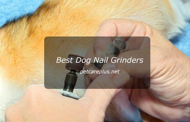 Top Best Dog Nail Grinders